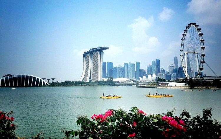 Сингапурде қызғалдақтар көрмесі өтті